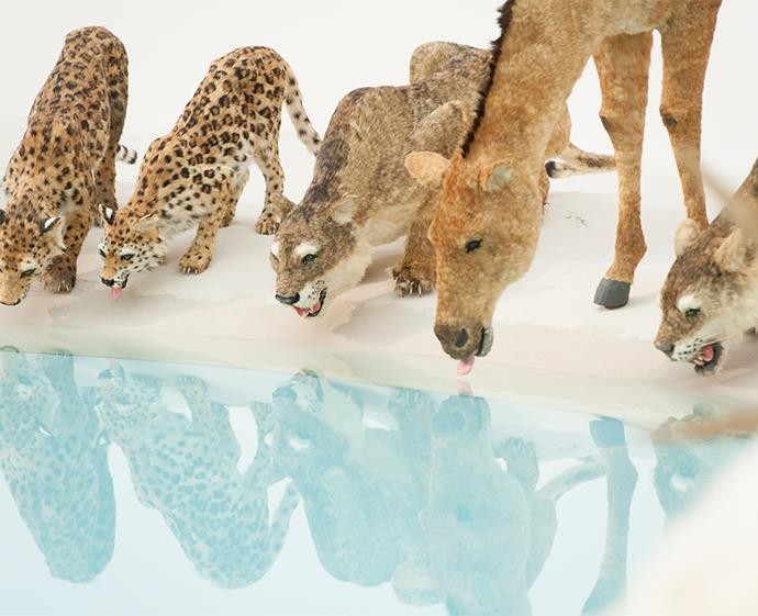 Cai Guo-Qiang's intricate *Heritage* still-life waterhole is sure to be a family favourite.