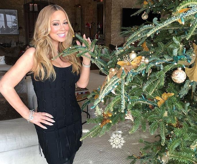 Mariah Carey posting with her gorgeous Christmas tree.