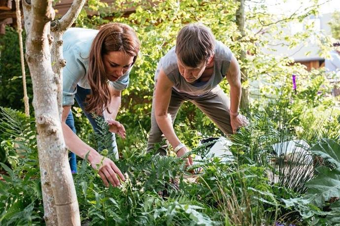 Get rid of weeds in your garden as they take water away from the plants you want to grow.