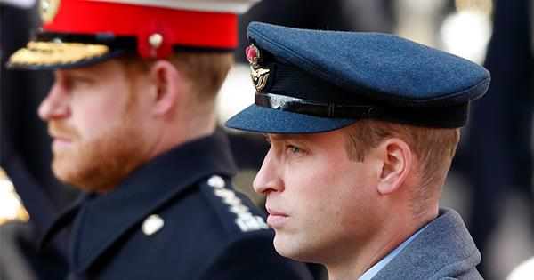 Prince Harry & Prince William's issues could have been smoothed by one person | Now To Love