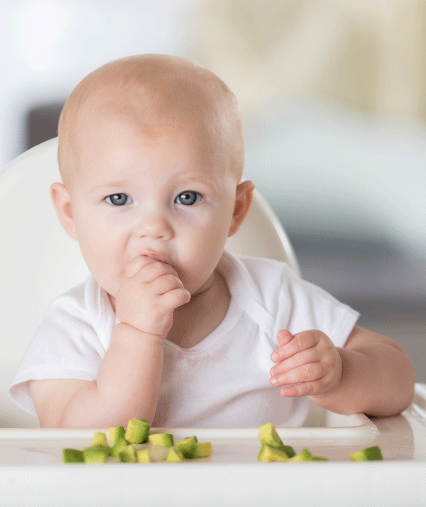 Even without teeth, most babies can munch soft food with their hard gums.