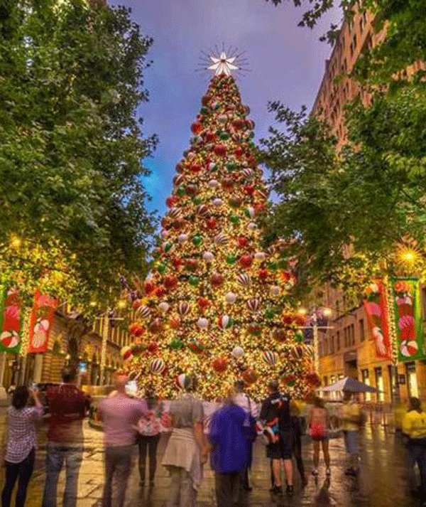 Can you imagine putting up and then packing away the 110,000 lights on the Martin Place Christmas Tree?