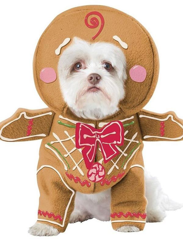 "**Gingerbread Pup Dog Costume** <br><br> **[$40 from Costume Box](https://www.costumebox.com.au/gingerbread-pup-dog-costume.html|target=""_blank""