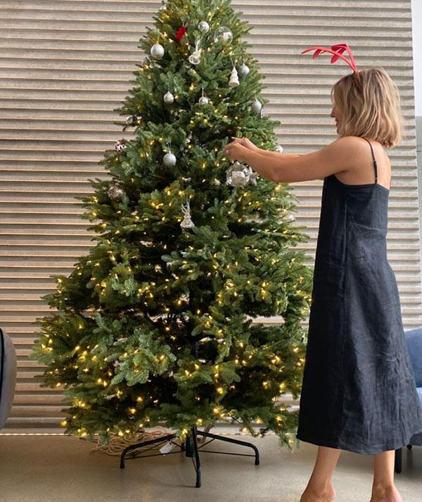 "**Jules Sebastian** <br><br> ""I know that Christmas is all about family, but if anyone comes near my tree while I'm decorating, there will be no Christmas,"" [Jules Sebastian](https://www.nowtolove.com.au/celebrity/celeb-news/jules-sebastian-guy-sebastian-delta-goodrem-60524