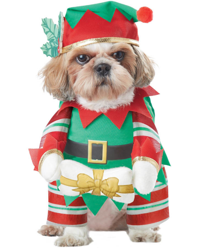 "**Elf Pup Costume** <br><br> **[$40 from Costume Box](https://www.costumebox.com.au/elf-pup-pet-costume.html|target=""_blank""