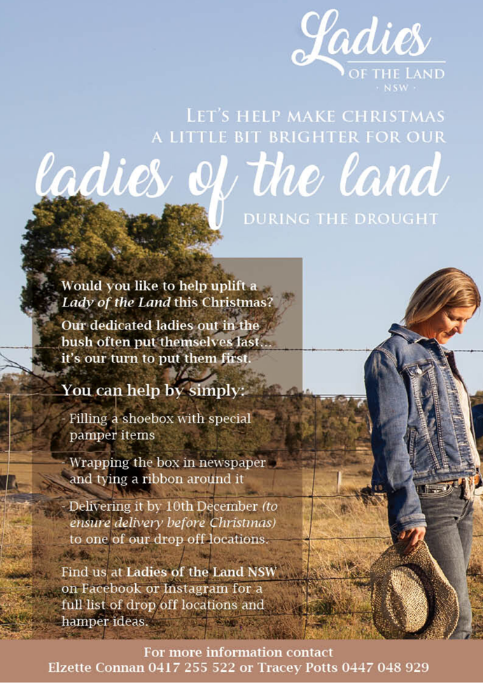 Ways to help: Ladies of the Land Christmas Flyer.
