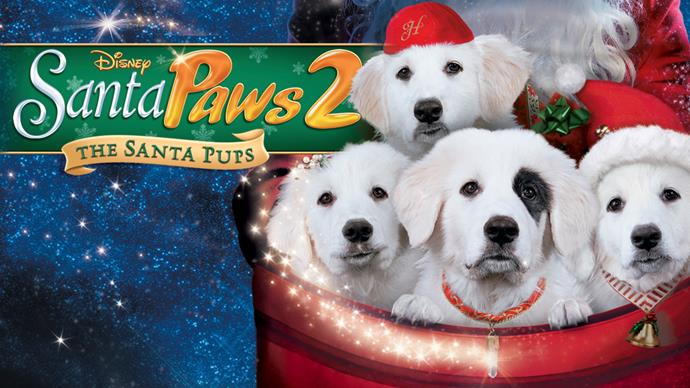 **Santa Paws 2: The Santa Pups (2012)** <br><br> Four of Santa's puppies cause a sack-load of mischief when they go to Pineville with Mrs Claus.