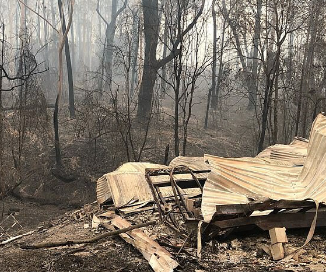 "Grant described the images as the ""reality of the bushfires""."