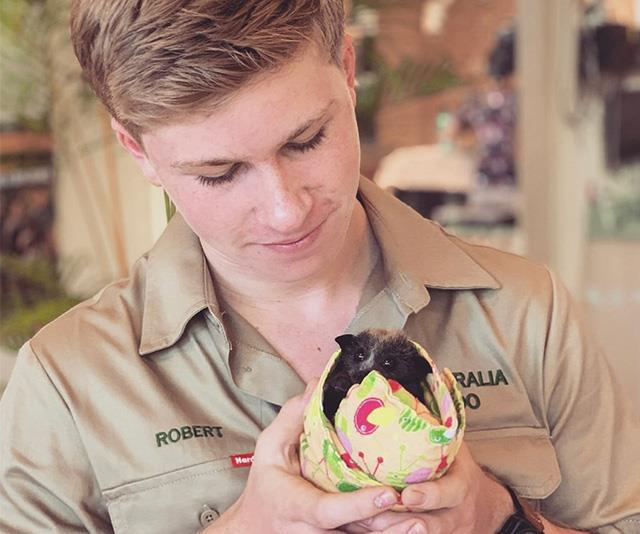 Robert Irwin, the eldest son of Terri Irwin and the late Steve Irwin, works at Australia Zoo on the Sunshine Coast in Queensland, and has been helping take care of many of the animals displaced by the horrific bushfires.  <br><br> While Australia Zoo is safe and well away from the danger zone, the site has become a safe haven for thousands of animals who have nowhere else to go.