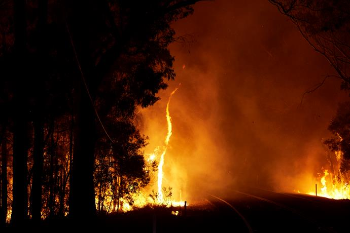 Wildfire ripped through Colo Heights, NSW, in December 2019.