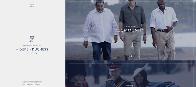 The pair have launched a new website, Sussexroyal.com, which will house information on the charities they are working with.