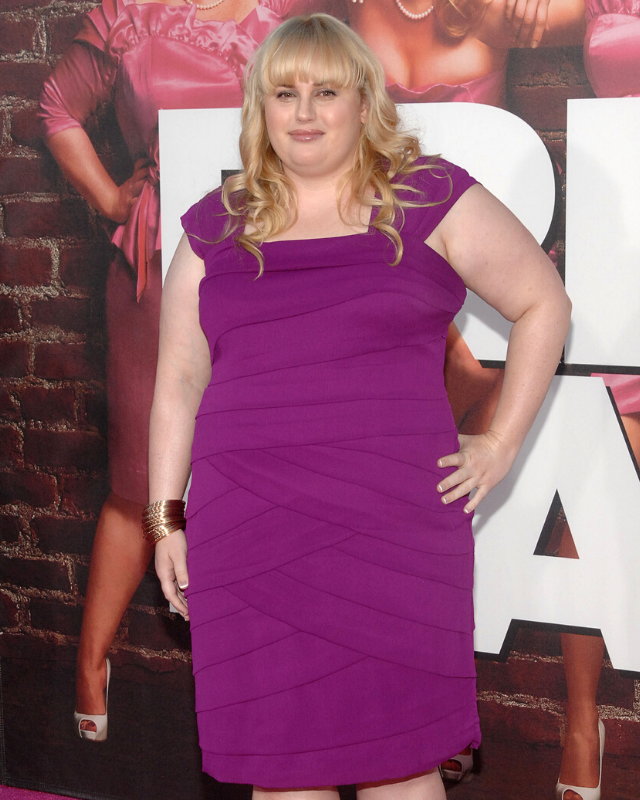 Rebel Wilson pictured in 2011.