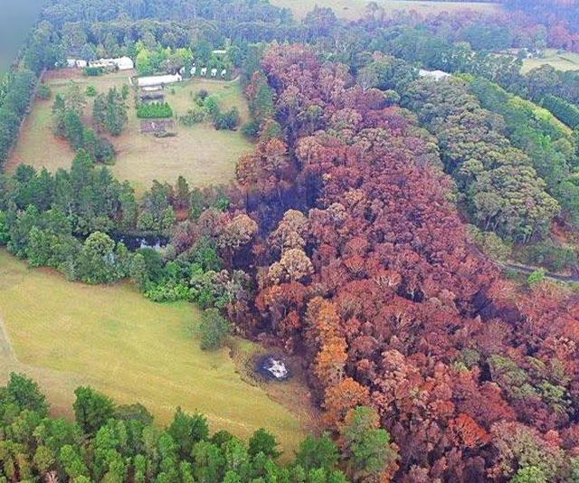 Aerial images show just how close the property came to being wiped out.