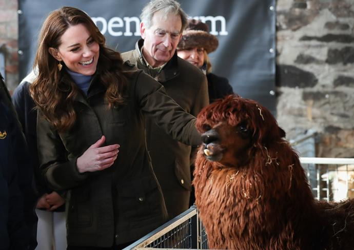 Kate met all kinds of quirky animals during the visit.