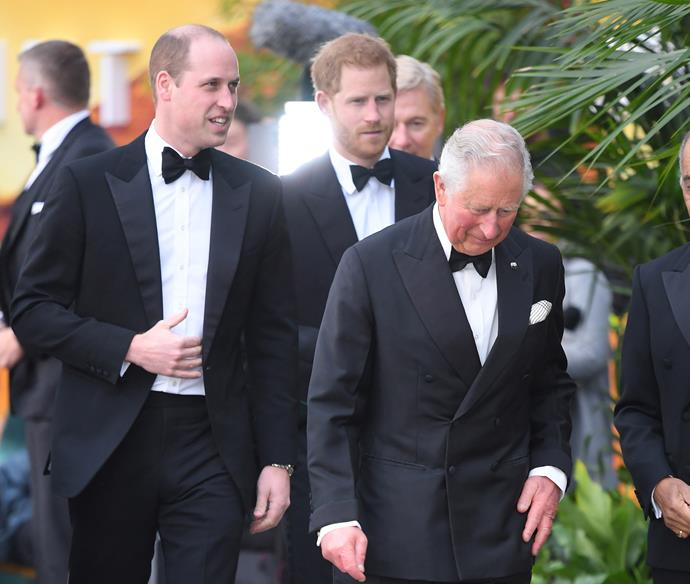 Harry and William might be stepping things up a notch in the coming weeks as the Coronavirus pandemic continues.