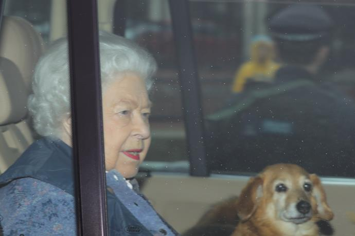 The Queen is just like the rest of us as she adapts to working from home.