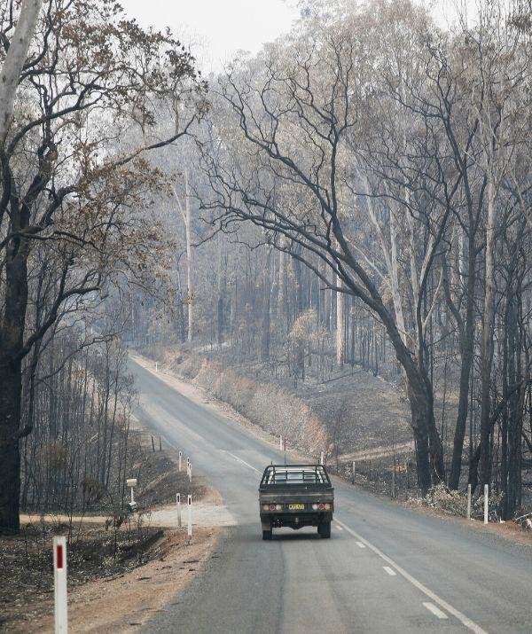 It was on November 23 last year, during the region's worst ever fires when lives were lost and dozens of homes destroyed.