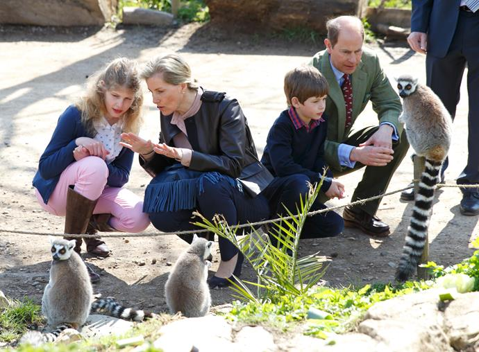 As Patron of the Bristol Zoological Society, Prince Edward and his family love visiting the wildlife at Bristol Zoo.