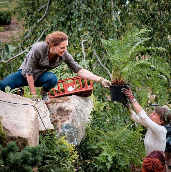 A stunning new image of Kate getting stuck into the garden was shared on Instagram.
