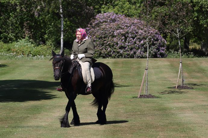 The Queen was pictured riding her horse, Fern, in Windsor this week.