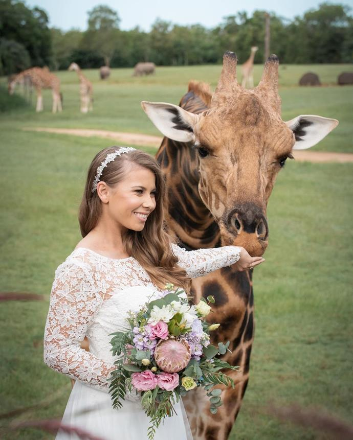 Bindi playing with a giraffe at Australia Zoo on her wedding day.