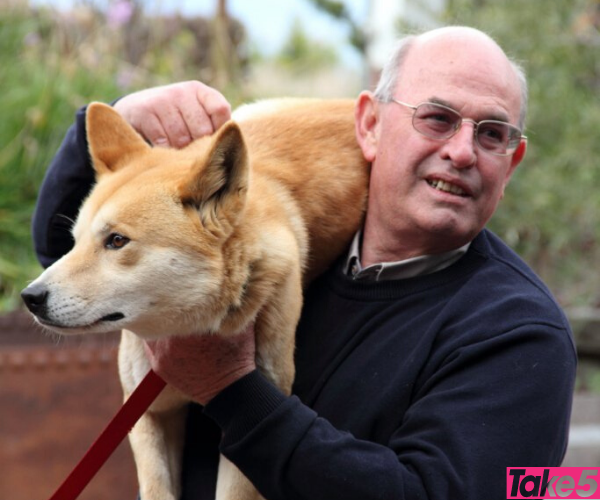 Peter was as passionate about protecting dingoes as I am.