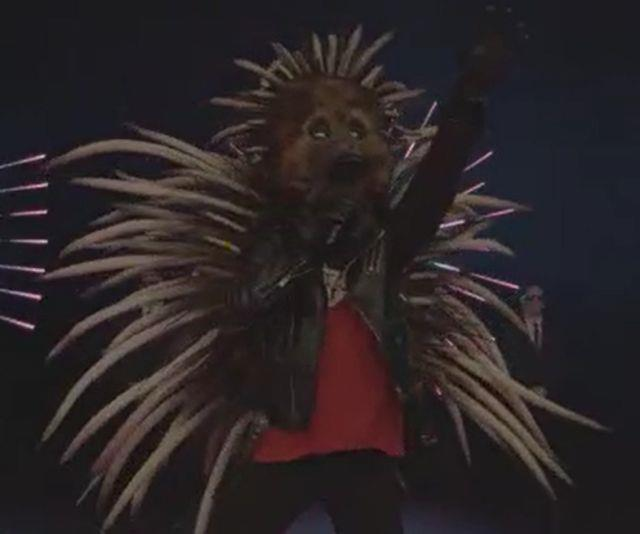 **ECHIDNA** <br><br> Crocodile Rock is so 70s. This is the year of Echidna Rock! <br><br> I know what you're thinking, is that Ash from Sing? No! It's even cuter. Our Echidna is looking sharp and is ready to rock out for season two of The Masked Singer Australia. <br><br> Positive feedback only please, our Echidna is a sensitive soul and would prefer no prickly commentary.