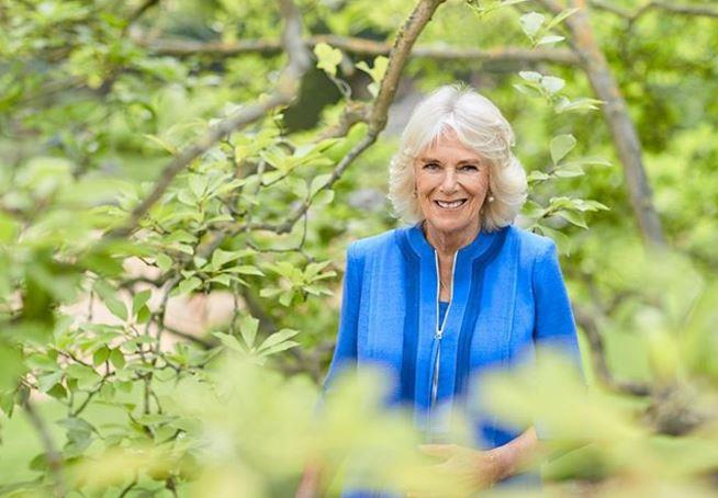 A gorgeous new picture of Duchess Camilla has been released in time for her 73rd birthday.