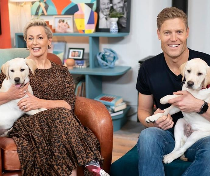 Chris and *The Living Room* team head to Lismore to help overhaul an animal rescue shelter.