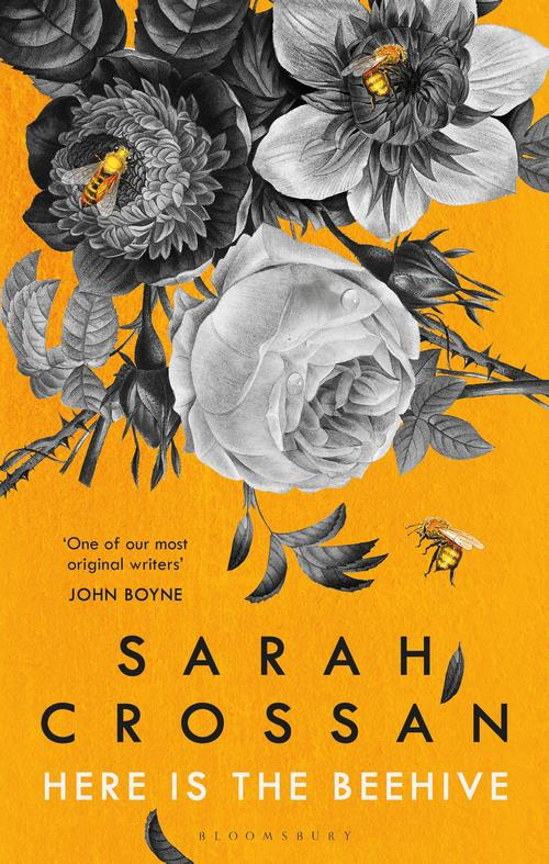 ***Here is the Beehive* by Sarah Crossan** <br><br> *Forbidden love* <br><br> Ana and Connor have been sneaking around in hotel rooms for three years, building a hot-house affair alongside their marriages.  <br><br> But then Connor dies, and Ana hears the news from his wife, who is calling Ana in her capacity as family solicitor. <br><br> From here, the revelations jump around, filling in the backstory and Ana's need to hang on to something while unable to say anything.