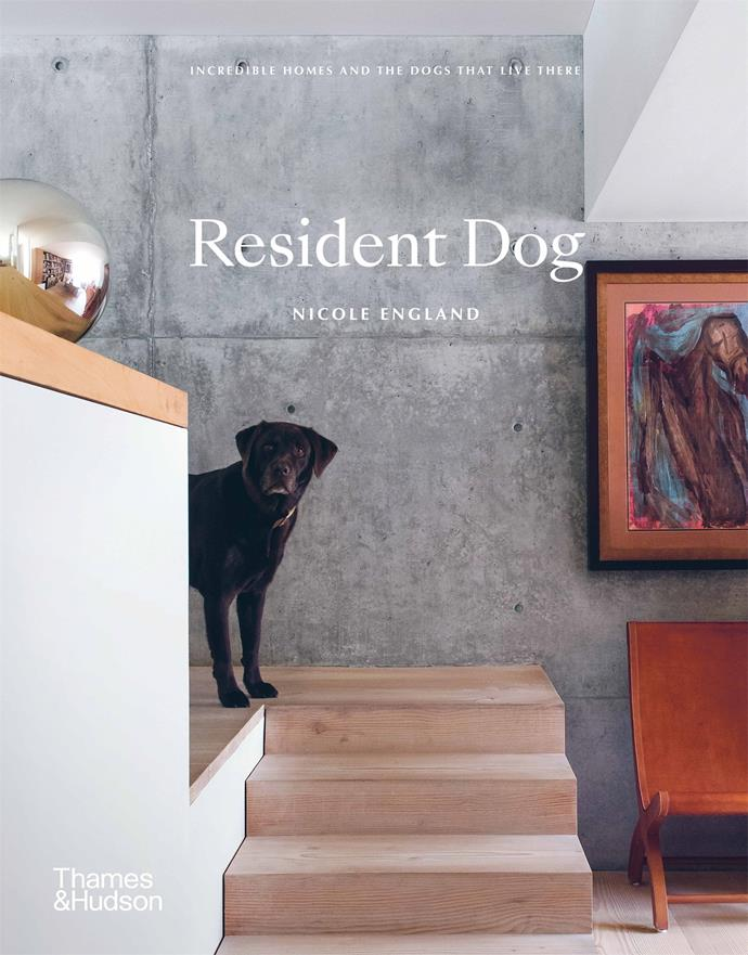 ***Resident Dog* by Nicole England** <br><br> *Table book* <br><br> If you've ever wondered if a dog will make your house a home, this stunning book of photographs heralds  a resounding yes.  <br><br> Melbourne-based interiors photographer Nicole England presents 25 houses with the dogs who live there.  <br><br> From spoodle Charlie to lagotto ramagnolos Mars and Truffle, and bull-mastiff kelpie Bergie, these pooches bring warmth and character to their exquisitely designed domains.