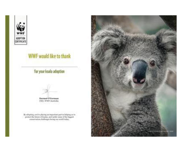 "**Adopt a fire-ravished furry friend in need**<br><br> Another option for those big-hearted dads out there, and one that hit particularly close to home after this year's devastating bushfires, is to adopt a koala.  <br><br>   The World Wildlife Fund has options for all budgets and they'll send you an adorable pack if you sign up. For those who can't wait for the pack to arrive, they also have an at-home adoption certificate to print off and gift.  <br><br>  Koala adoption, WWF, from $15, [shop it here.](https://donate.wwf.org.au/adopt/koala?t=AD2021O01&f=41110-227&utm_campaign=acq_always_on&gclid=CjwKCAjw4rf6BRAvEiwAn2Q76uKO5kXrbbD0tk0XUBVTMUeZTOz3zEQoixn8tN6sianoAOcCDuUH3xoCnkgQAvD_BwE|target=""_blank"")"