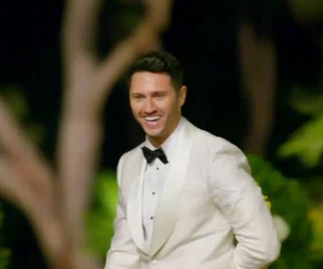 **Damien Stone**<br><br>   Handsome, blue-eyed property valuer Damien instantly captured fans attention as he arrived in a white tux in the first trailer.