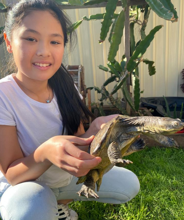 While the tween is quietly making big plans for her future, she's also enjoying her days learning ballet and caring for her pet turtle Franklin.