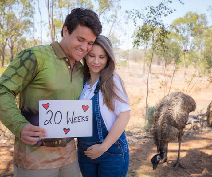 Half-way mark: Bindi and Chandler celebrated reaching 20-weeks by sharing this stunning new family snap.