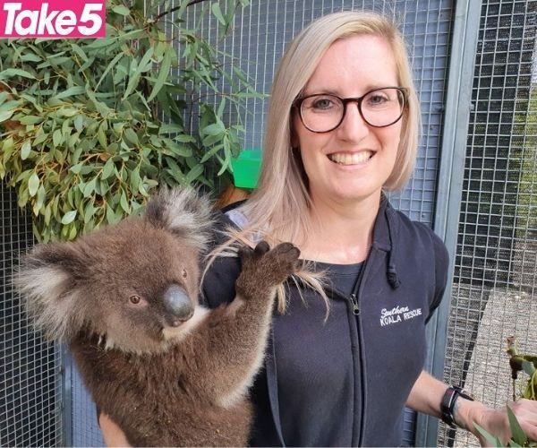 I love helping koalas.