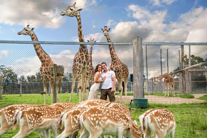 The happy couple are settling into life at the famous Mogo Wildlife Park.