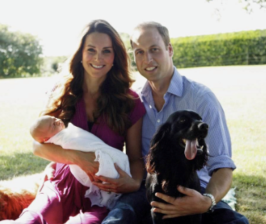 The Cambridge's beloved dog Lupo is the uncle of the family's new pup.