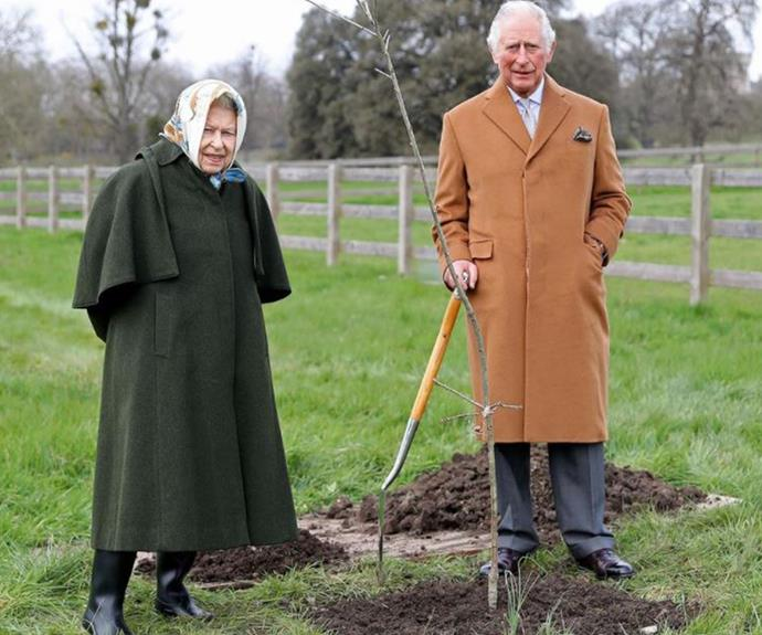 The rare new picture of Prince Charles and The Queen.