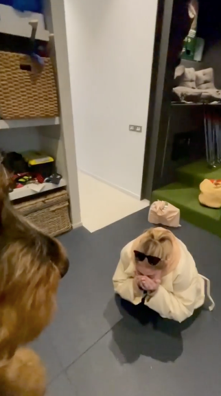 The surprises never end between these two - In June 2021, Andy shared an adorable video where he surprised Bec with their sweet new puppy, Henri.