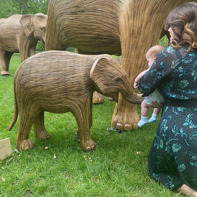 Cute! Curious August meets a baby 'elephant', aptly named Assam August.