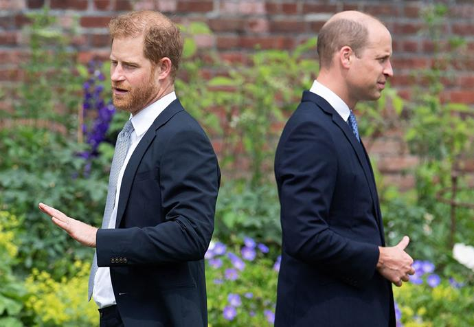 Harry and William will no doubt find comfort in the peaceful newly designed garden around their mother's statue.