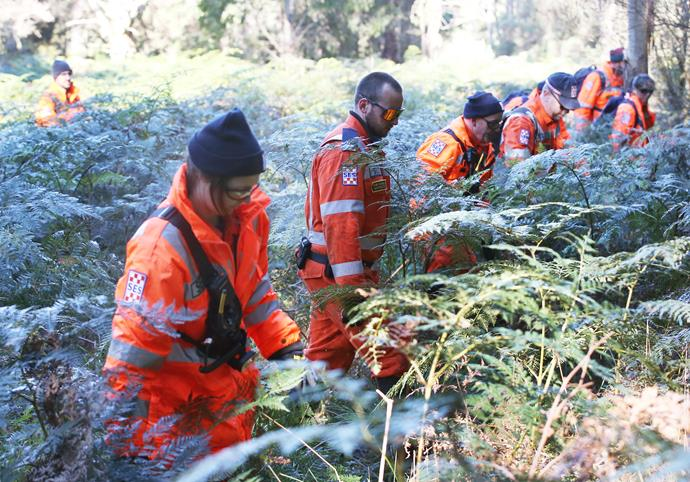 More than 500 people assisted in the search for William