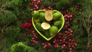 The best feijoa recipes you will ever need