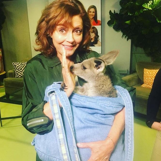 Susan Sarandon meets a joey.