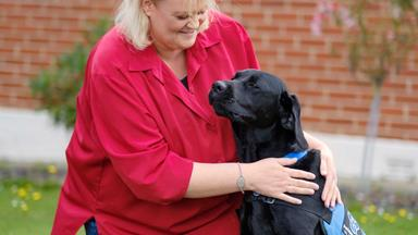 Life-saving labrador changes diabetic Kiwi woman's future