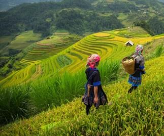 Travel to...Vietnam