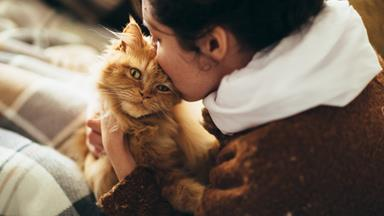 Scientists prove something very interesting about cat people