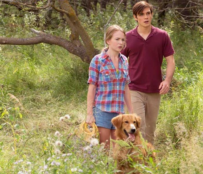 KJ has landed his first Hollywood movie role, starring with Britt Robertson in *ADog's Purpose*.
