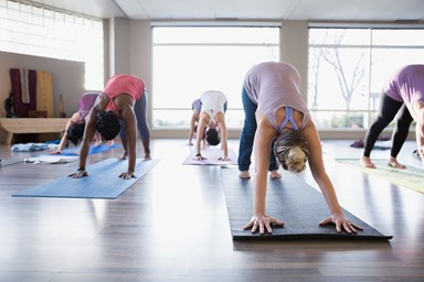 Yoga surges in popularity, while organised sport is in decline in New Zealand